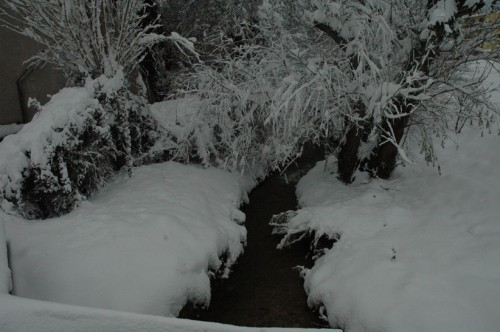 Marignane-sous-la-neige6.jpg
